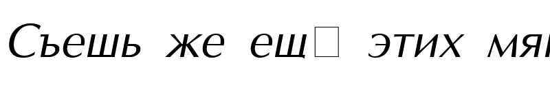 Preview of AGOptCyrillic Normal-Italic