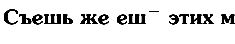 Preview of AGSouCyrillic Bold