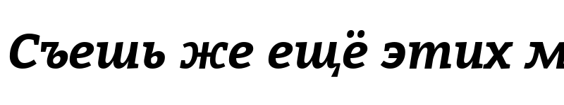 Preview of Bitter Bold Italic