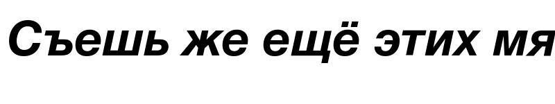 Preview of HelveticaNeueCyr Bold Italic