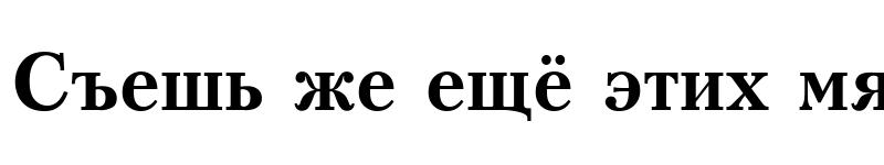 Preview of Kudrashov Bold