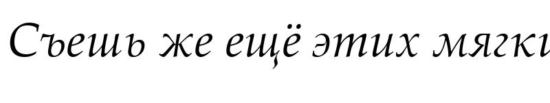 Preview of Palatino Linotype Italic